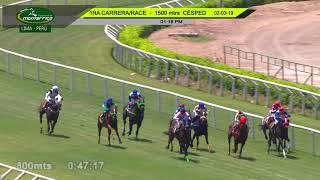 Vidéo de la course PMU MAIDEN 1500