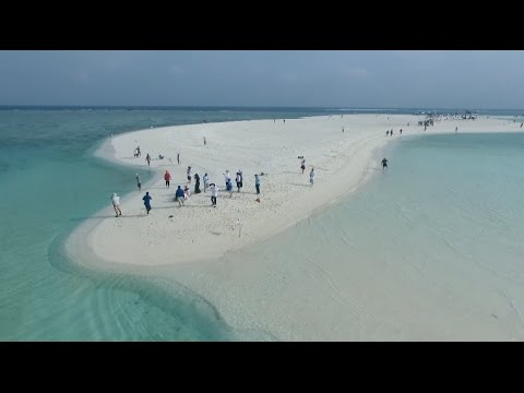 China's Xisha Islands Cruise Tour Thrives