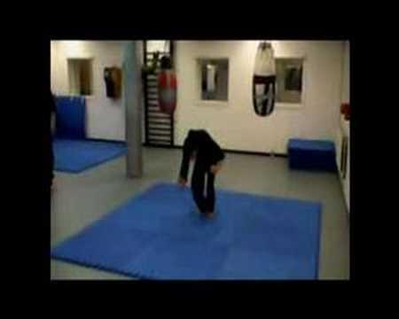 Freestyle kung fu