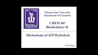 CHEM 407 - ATP Hydrolysis Mechanisms