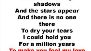 Adele - make you feel my love lyrics