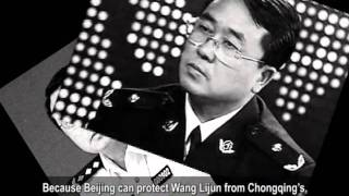 U.S. House of Representatives proposes to investigate Wang Lijun incident
