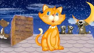 Рыжий кот - Мурлыка!