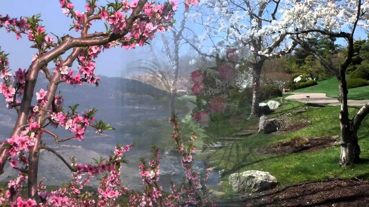 Картинки весеннее пробуждение природы