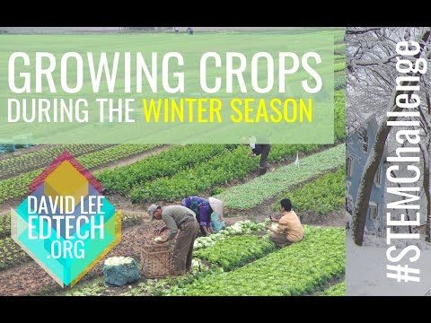 Growing Crops During Winter: STEM Education Challenge