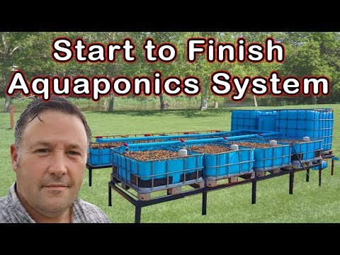 AQUAPONICS – Step by Step Instructions – From Start to Finish