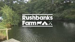 Welcome to Rushbanks Farm Campsite
