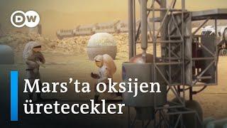 NASA Mars'a oksijen üreten mekanik ağaç ve helikopter gönderiyor - DW Türkçe