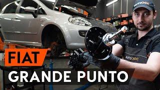 Auswechseln Glühlampe Kennzeichenbeleuchtung FIAT GRANDE PUNTO: Werkstatthandbuch
