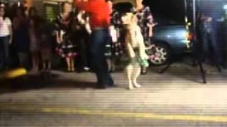 Perro bailando el tema de merengue