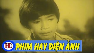 Đàn Chim Và Cơn Bão Full | Phim Việt Nam Cũ Hay