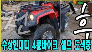 주부아빠,4륜바이크_도색작업, 키덜트 온오프로드 동네마실용 이동수단_ATV