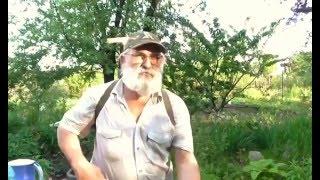 видео Каратэ, инсектицид: инструкция по применению для защиты садового участка