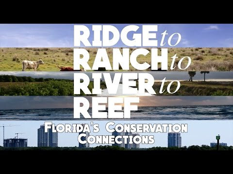 Ridge to Ranch to River to Reef: Florida's Conservation Connections