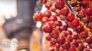 《读书》 20190803 肖宁 《唯食物可慰藉》 那么甜| CCTV科教