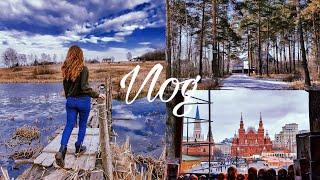 Vlog | дача | деревня | цветочная база | Храм Василия Блаженного