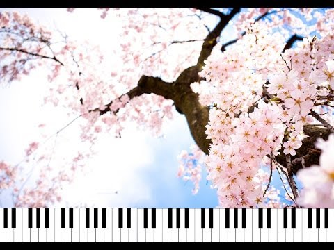 ❀Ayakura❀ ♫ Four Seasons ♫ (piano ピアノ Ver.) - 安室奈美恵 Namie Amuro
