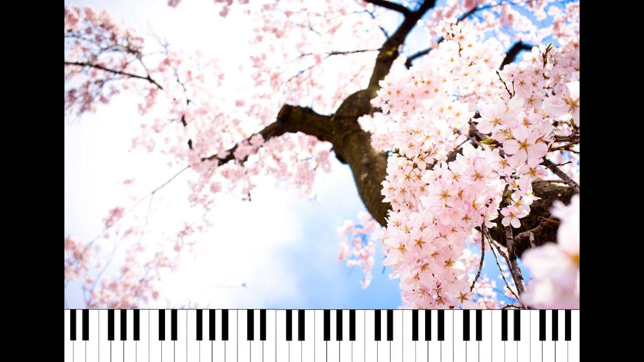 four seasons (music video) / namie amuro