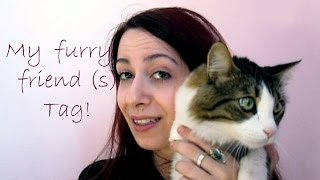 Οι τριχωτοί μου φίλοι! Meet my cats ♡ Thumbnail