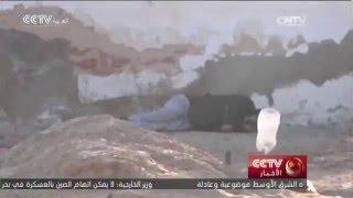 مقتل 45 شخصا على الأقل في مواجهات بين الجيش التونسي ومسلحين في مدينة بن قردان