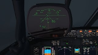 PMDG 737 NGX Autoland with HUD Support
