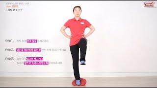 [시셀] 싯핏 운동방법(밸런스 운동)