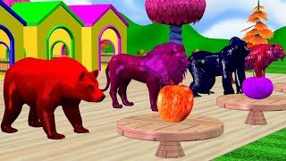 Learn Animals Colors  with Eat Fruits To wild animals - Funny Rhymes For kids