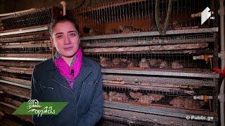 შემოსავლიანი ბიზნესი, რომელიც ფრინველების სიყვარულით დაიწყო - ფერმერი გოგონას ისტორია