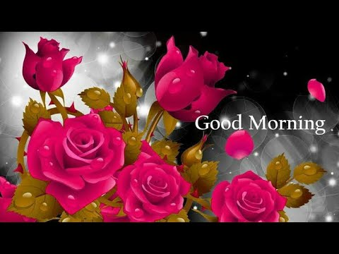 Good Morning Song Status Gif Imagesmessages Whatsapp