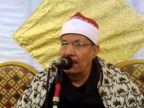 الشيخ محمد السيد ضيف (سورة فصلت)