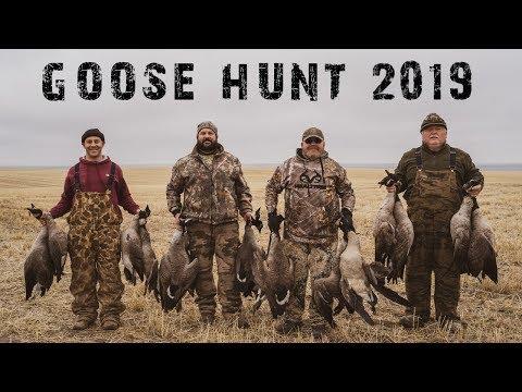 Goose Hunting Washington State 2019 North Flight Waterfowl