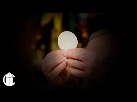 Catholic Mass: 9/18/19   Wednesday of the Twenty-Fourth Week in Ordinary Time