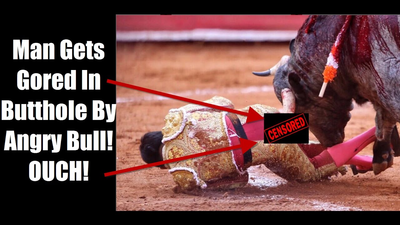 Download Actual Footage of Bull Goring Matador In Butthole - 11 inches Deep