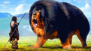 পৃথিবীর ইতিহাসের সবচেয়ে বড় ১৫টি প্রাণী, যাদের দেখার সৌভাগ্য সবার হয়না! Biggest Animal Compilation