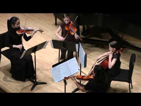 Mozart Symphony #40 for String Quartet