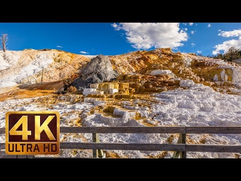 Virtual Journey to Yellowstone National Park, Summer | 4K Nature Relax Video  - 3 HRS Nature Sounds