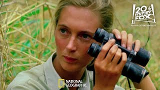 Celebrate Earth Day with National Geographic   FOX Home Entertainment