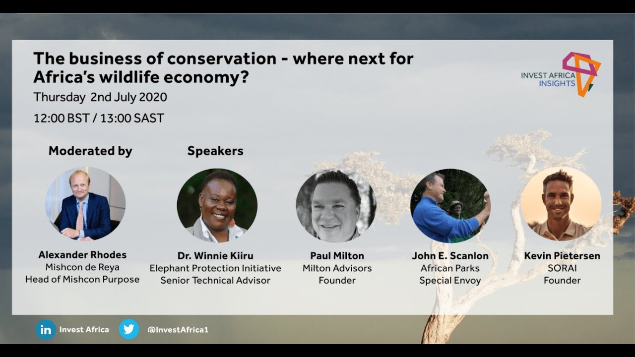 The business of conservation – where next for Africa's wildlife economy?