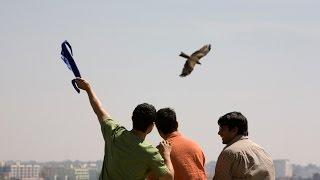 «Три идиота» - Фестиваль современного индийского кино в «Родине»