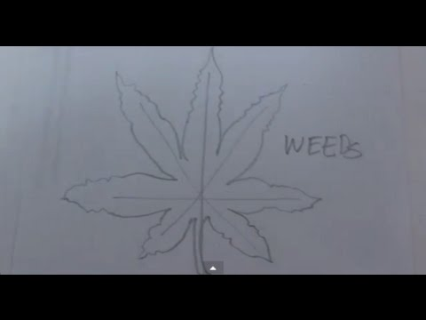 how to draw a weed leaf youtube