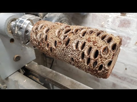 Woodturning - The Nut!
