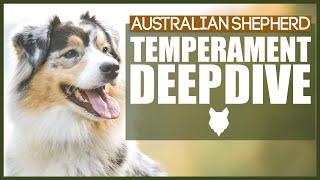 AUSTRALIAN SHEPHERD TEMPERAMENT