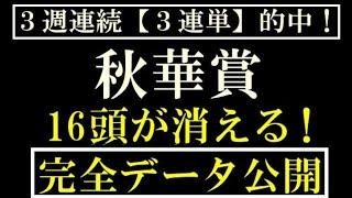 秋華賞2020 16頭が消える!完全データ 公開
