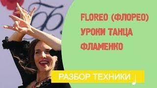 Уроки фламенко танца. Floreo (Флорео)