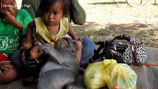 adorable monkey sok and baby have lunch together but sok still look after adorable girl in mattress