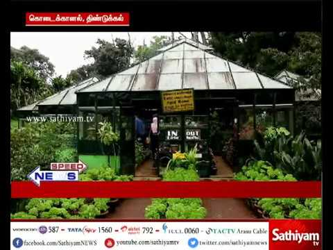 Tourists sees rare species of flowers in Kodaikanal Bryant Park with Annap bird neck shape