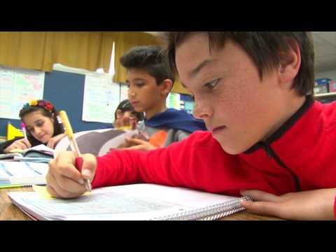 American School System  (English)