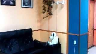 Общежитие в Москве недорого (М. Авиамоторная)(Уютный хостел, расположенный в 5 минутах ходьбы от метро Авиамоторная. Дружелюбный и отзывчивый персонал...., 2014-08-21T12:09:38.000Z)
