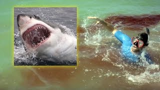 5 Most Dangerous Beaches in the World!