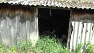 видео: Деревня Берёзово 2016